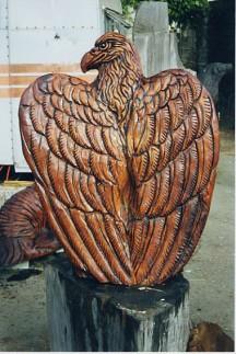 eagle-back_5200185907_o