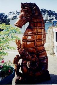seahorse_5200778588_o